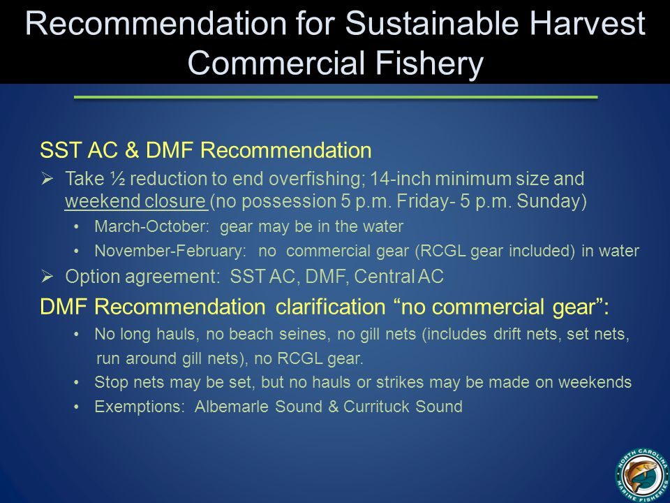 Recommendation for Sustainable Harvest Commercial Fishery SST AC & DMF Recommendation  Take ½ reduction to end overfishing; 14-inch minimum size and weekend closure (no possession 5 p.m.