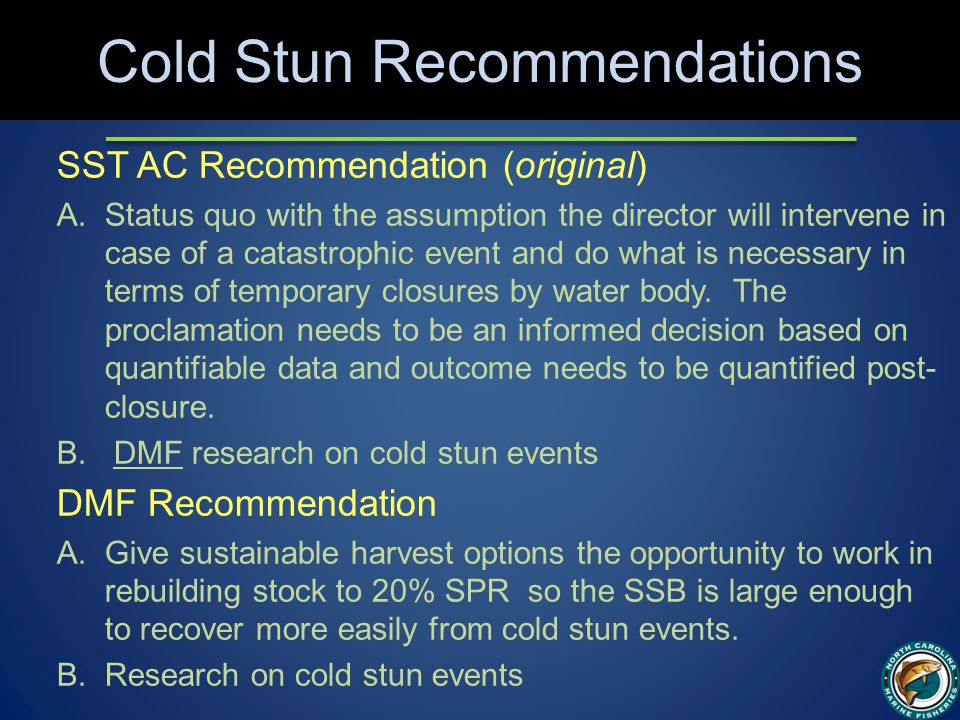 Cold Stun Recommendations SST AC Recommendation (original) A.Status quo with the assumption the director will intervene in case of a catastrophic event and do what is necessary in terms of temporary closures by water body.