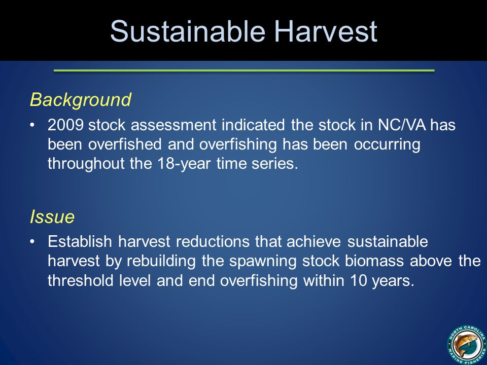 Sustainable Harvest Background 2009 stock assessment indicated the stock in NC/VA has been overfished and overfishing has been occurring throughout the 18-year time series.