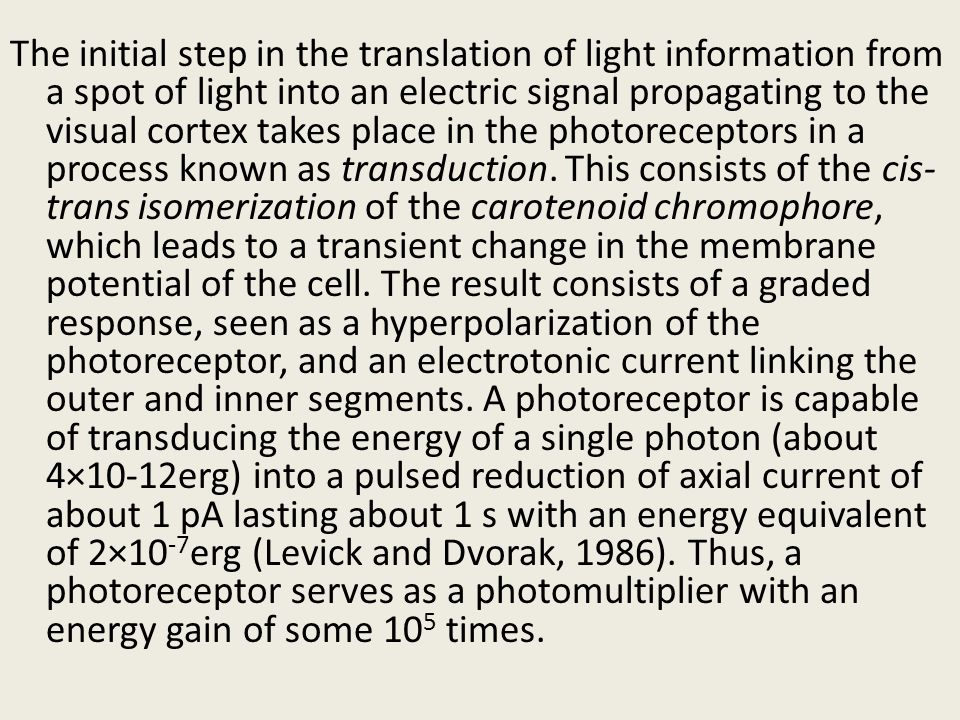 The initial step in the translation of light information from a spot of light into an electric signal propagating to the visual cortex takes place in