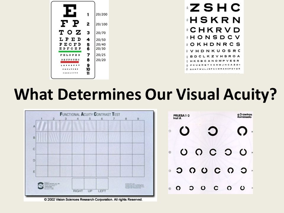 What Determines Our Visual Acuity?