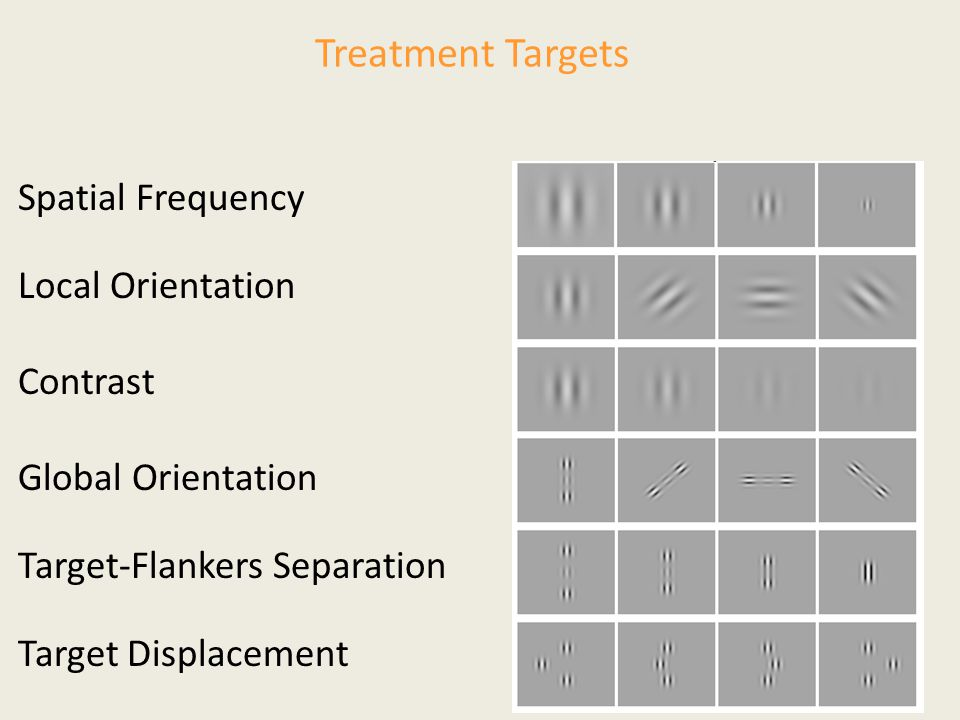 Treatment Targets Spatial Frequency Local Orientation Contrast Target-Flankers Separation Target Displacement Global Orientation