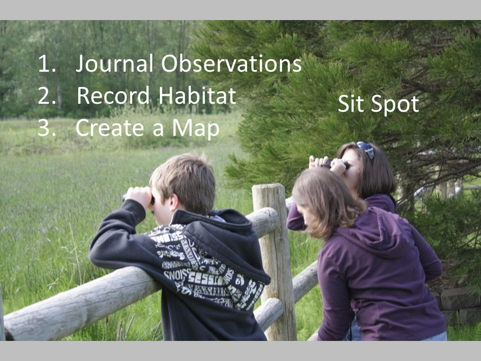 1.Journal Observations 2.Record Habitat 3. Create a Map Sit Spot