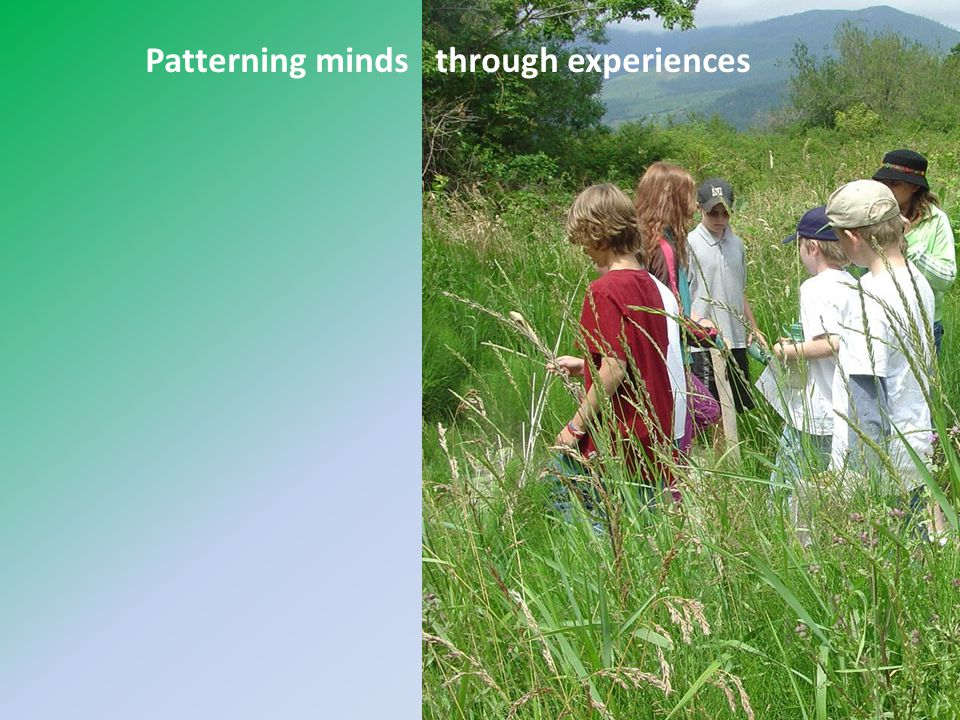 Patterning minds through experiences