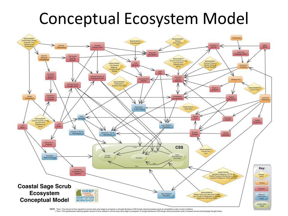 Conceptual Ecosystem Model