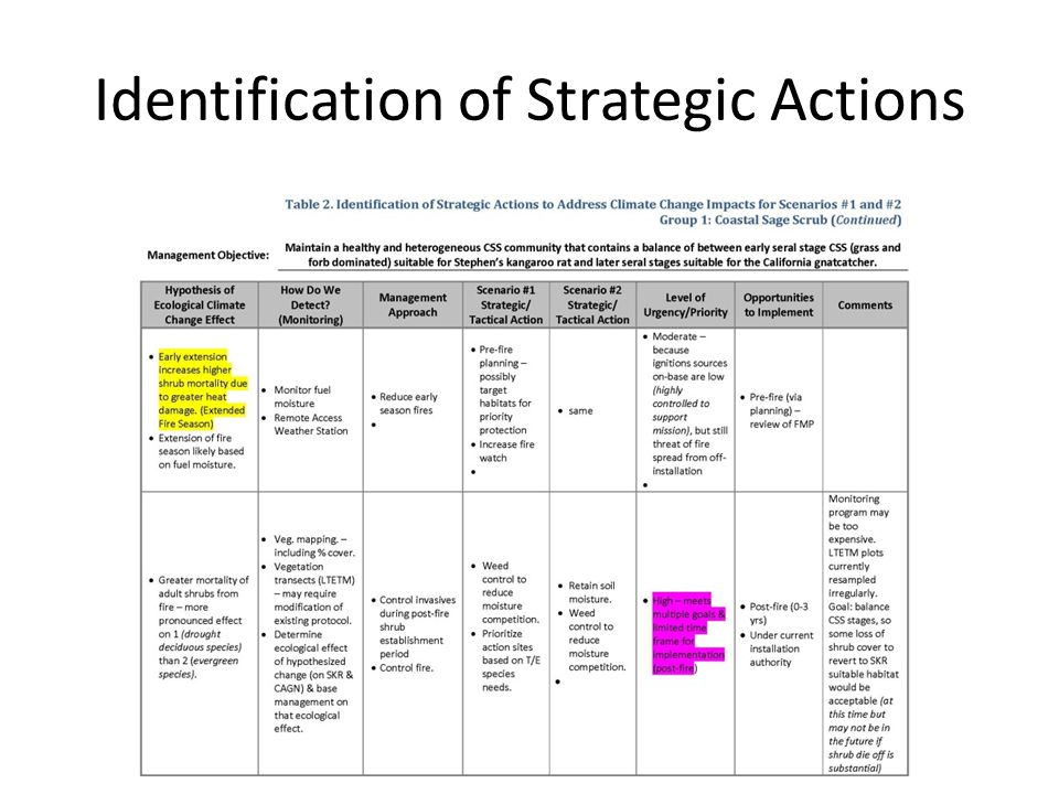 Identification of Strategic Actions