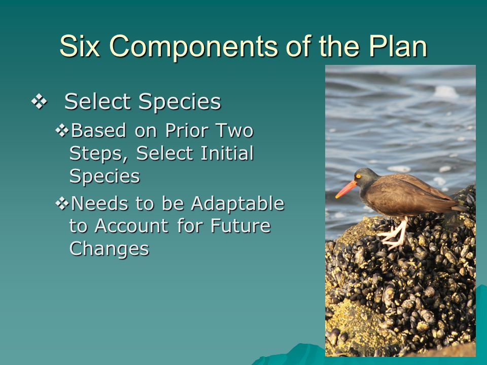 Six Components of the Plan  Select Species  Based on Prior Two Steps, Select Initial Species  Needs to be Adaptable to Account for Future Changes