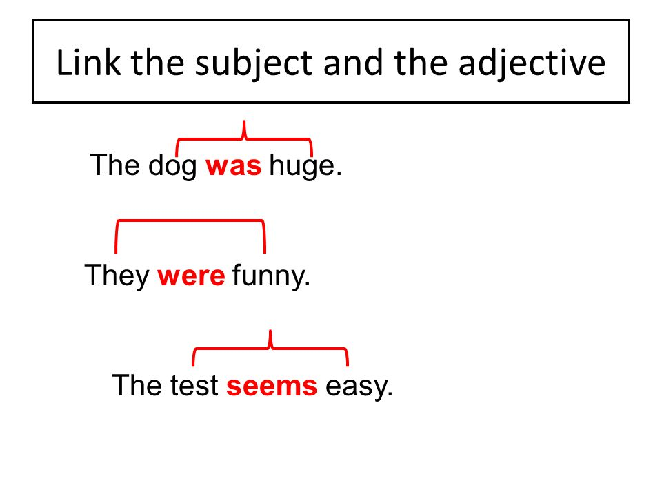 Link the subject and the adjective The dog was huge. They were funny. The test seems easy.