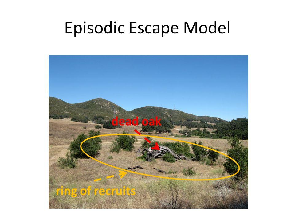 dead oak ring of recruits Episodic Escape Model
