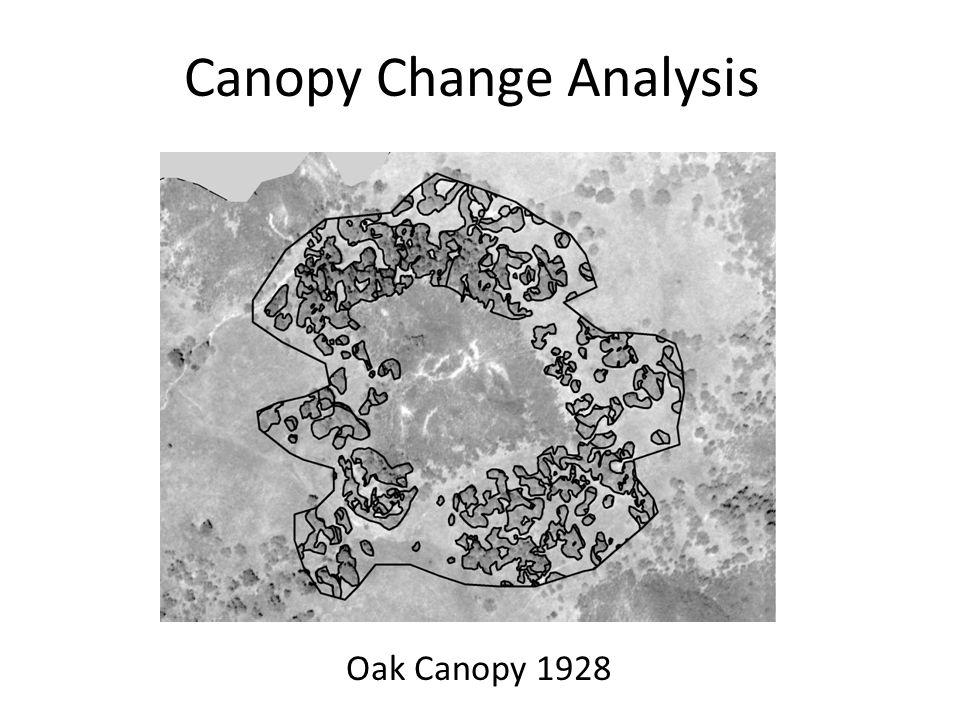 Canopy Change Analysis Oak Canopy 1928