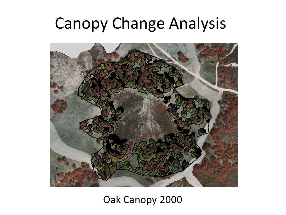 Canopy Change Analysis Oak Canopy 2000