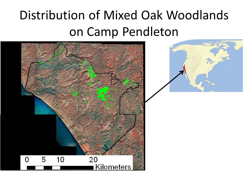 Distribution of Mixed Oak Woodlands on Camp Pendleton