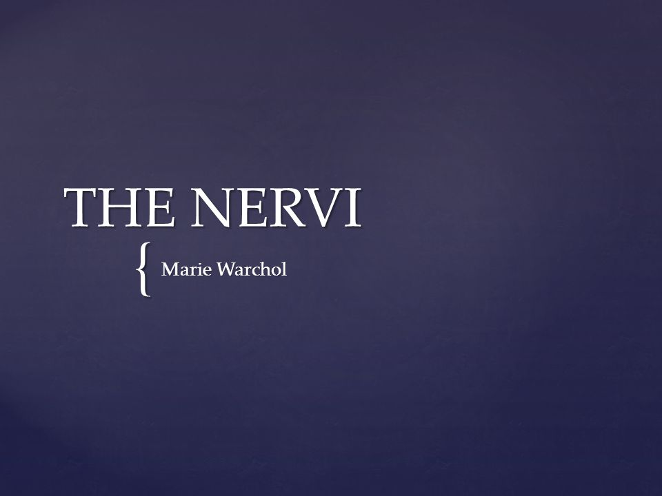 { THE NERVI Marie Warchol