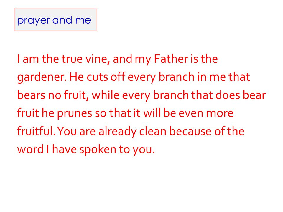 prayer and me I am the true vine, and my Father is the gardener. He cuts off every branch in me that bears no fruit, while every branch that does bear