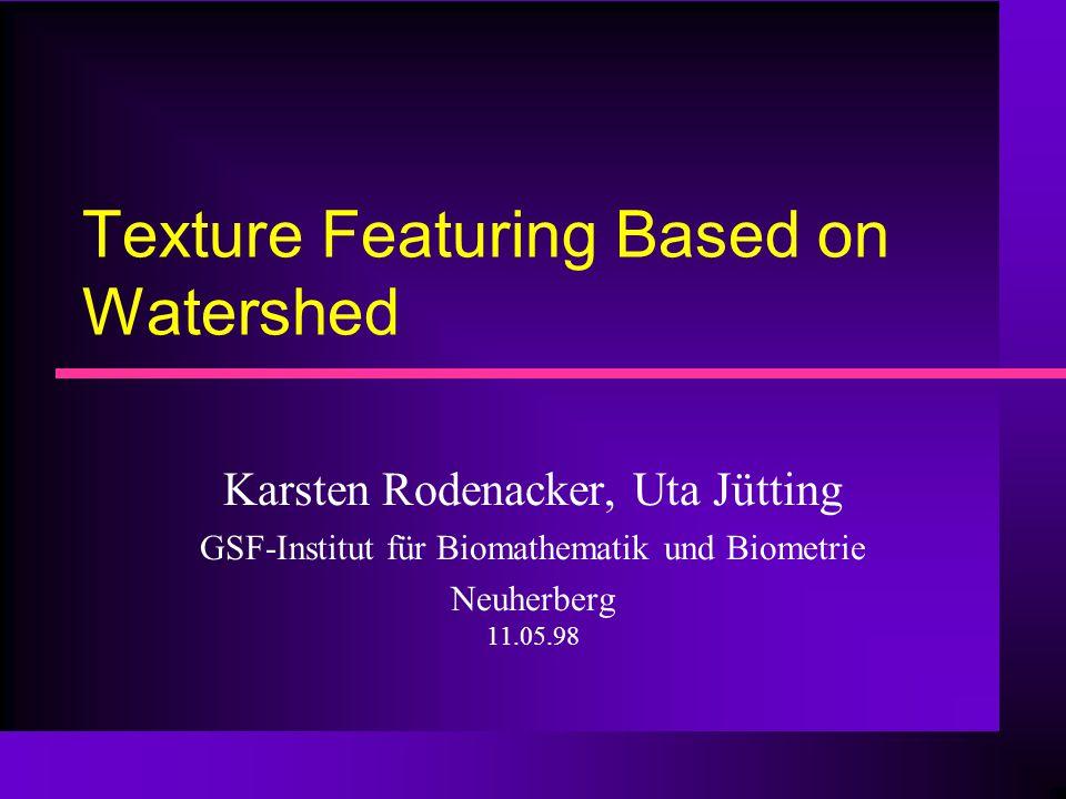 Texture Featuring Based on Watershed Karsten Rodenacker, Uta Jütting GSF-Institut für Biomathematik und Biometrie Neuherberg 11.05.98