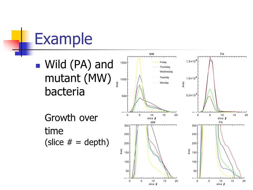 Example Wild (PA) and mutant (MW) bacteria Growth over time (slice # = depth)