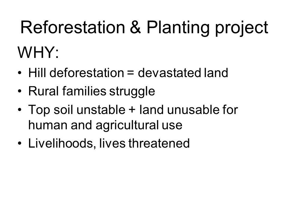 Reforestation & Planting project WHY: Hill deforestation = devastated land Rural families struggle Top soil unstable + land unusable for human and agricultural use Livelihoods, lives threatened