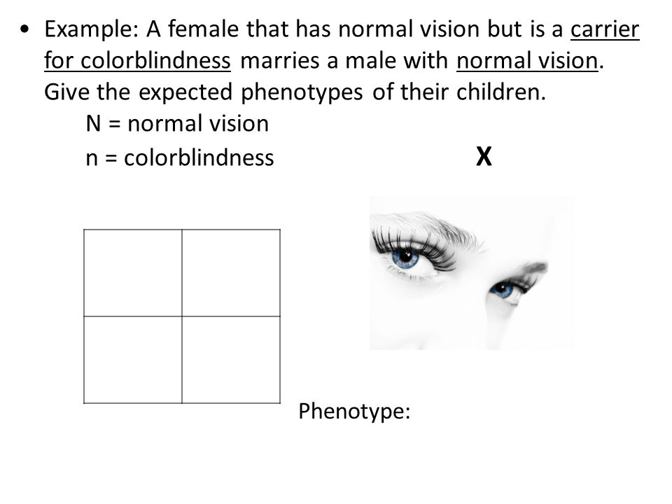 XNXNXNXN XNXnXNXn XNYXNYXnYXnY XNXN XnXn XNXN Y Phenotype: 2 normal vision females 1 normal vision male 1 colorblind male Example: A female that has normal vision but is a carrier for colorblindness marries a male with normal vision.