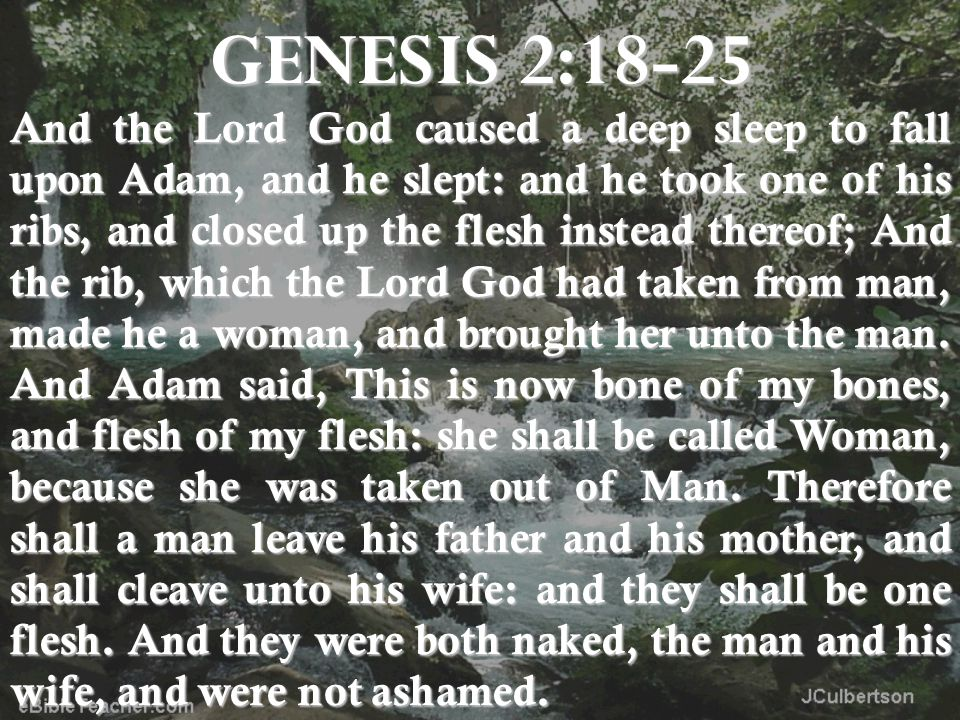 GENESIS 2:18-25 And the Lord God caused a deep sleep to fall upon Adam, and he slept: and he took one of his ribs, and closed up the flesh instead thereof; And the rib, which the Lord God had taken from man, made he a woman, and brought her unto the man.
