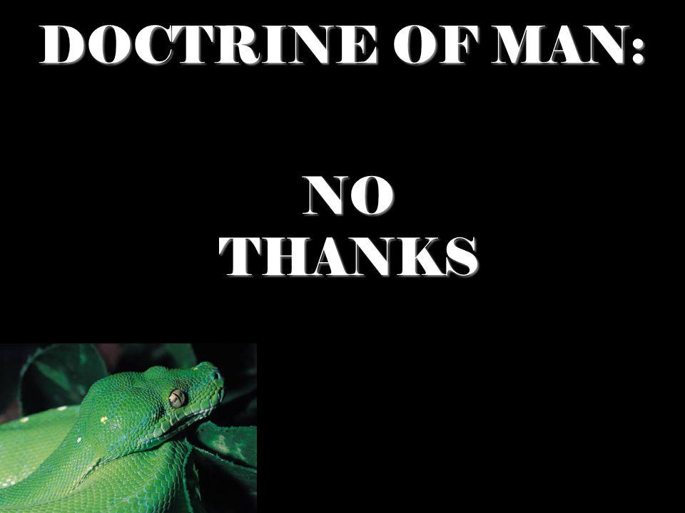 DOCTRINE OF MAN: NO NO THANKS THANKS