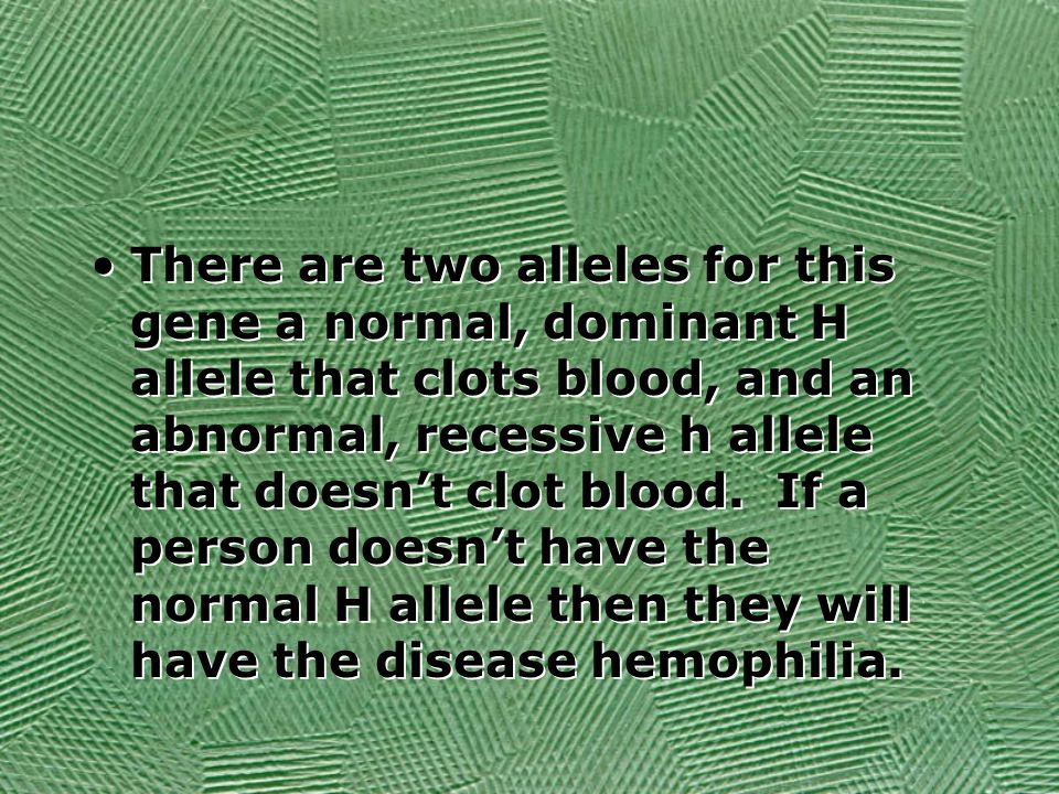 There are two alleles for this gene a normal, dominant H allele that clots blood, and an abnormal, recessive h allele that doesn't clot blood.