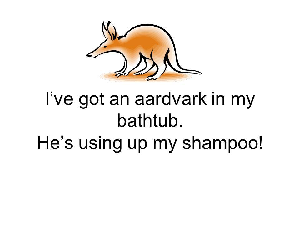 I've got an aardvark in my bathtub. He's using up my shampoo!