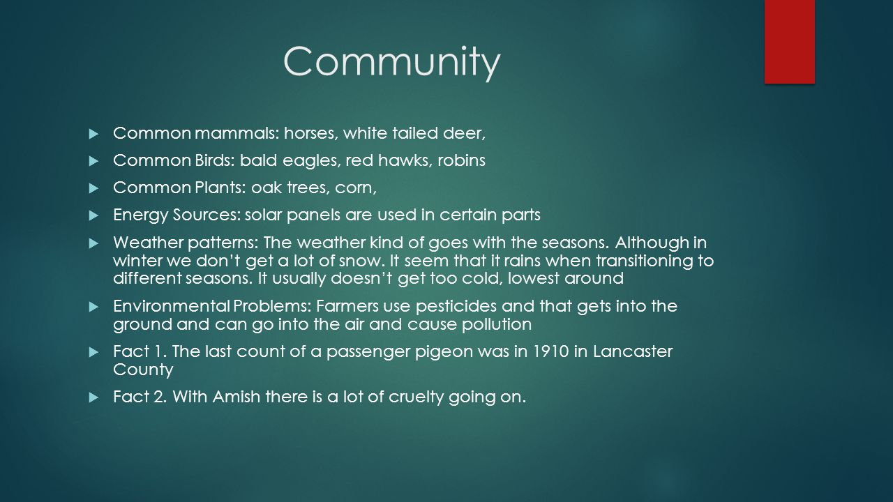 Community  Common mammals: horses, white tailed deer,  Common Birds: bald eagles, red hawks, robins  Common Plants: oak trees, corn,  Energy Sources: solar panels are used in certain parts  Weather patterns: The weather kind of goes with the seasons.
