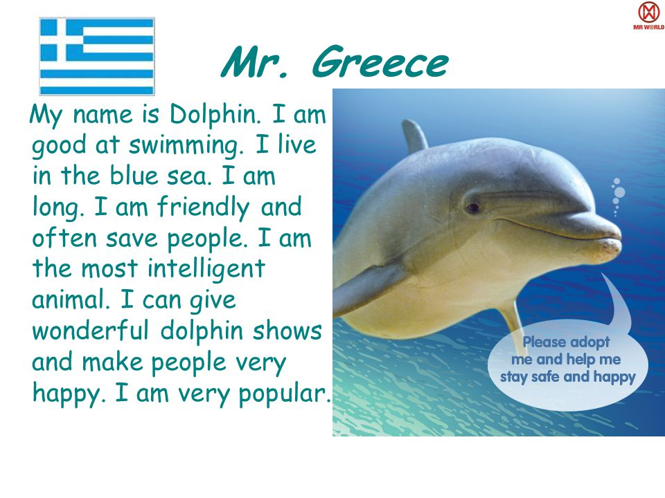 Mr. Greece My name is Dolphin. I am good at swimming.