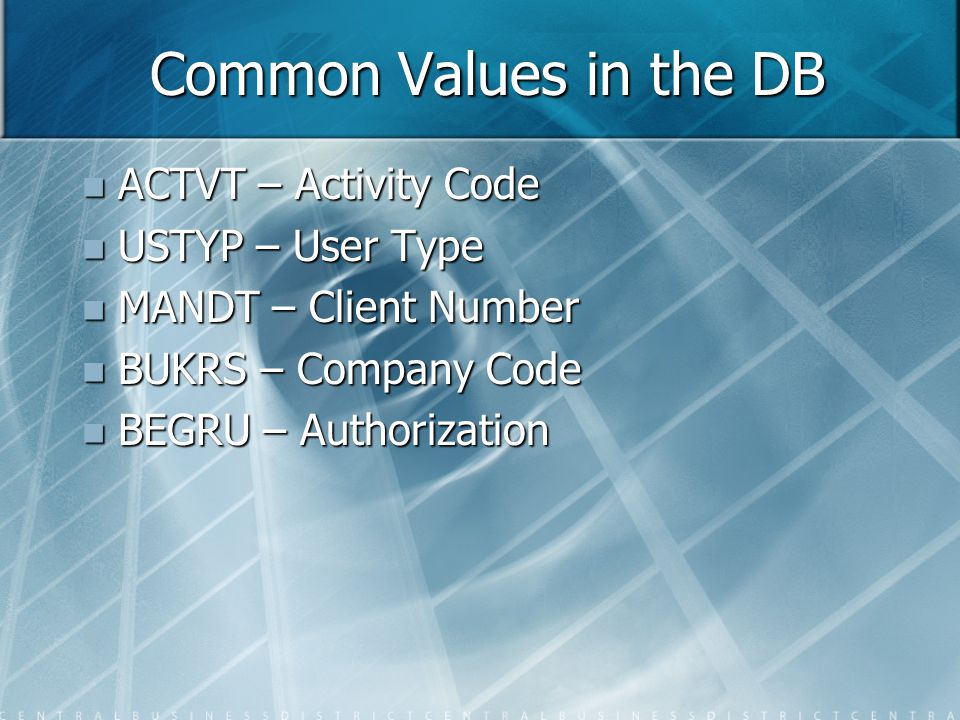 Common Values in the DB ACTVT – Activity Code ACTVT – Activity Code USTYP – User Type USTYP – User Type MANDT – Client Number MANDT – Client Number BUKRS – Company Code BUKRS – Company Code BEGRU – Authorization BEGRU – Authorization