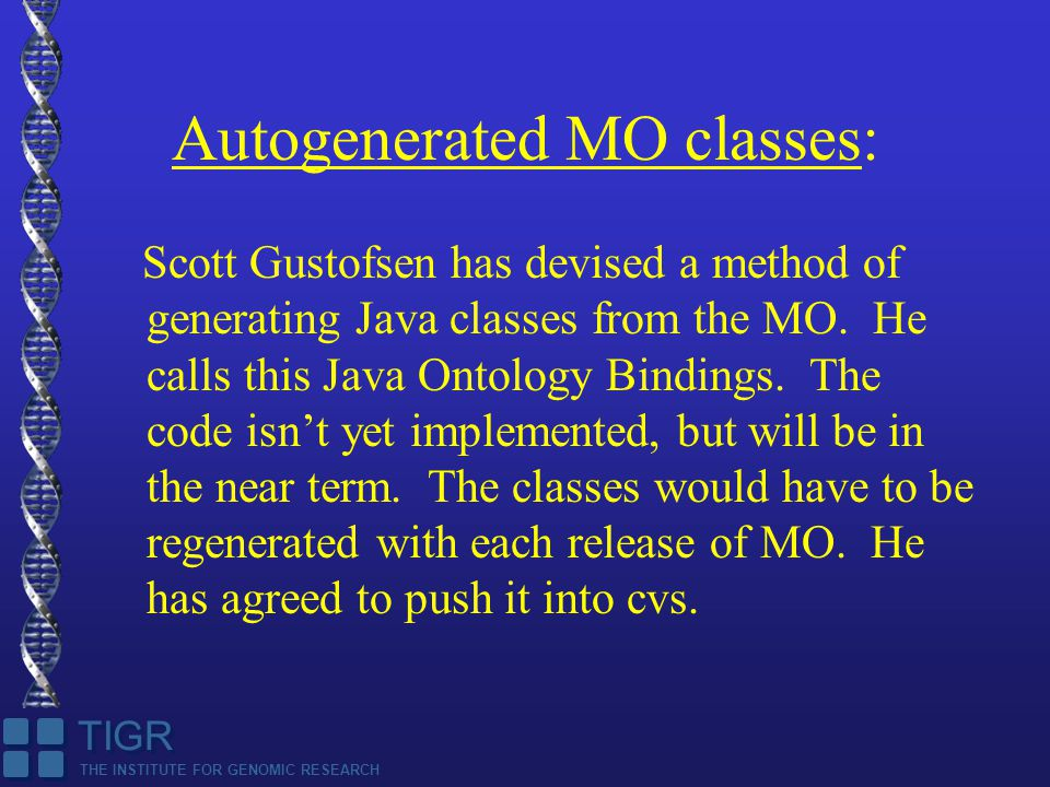 THE INSTITUTE FOR GENOMIC RESEARCH TIGR Autogenerated MO classes: Scott Gustofsen has devised a method of generating Java classes from the MO.
