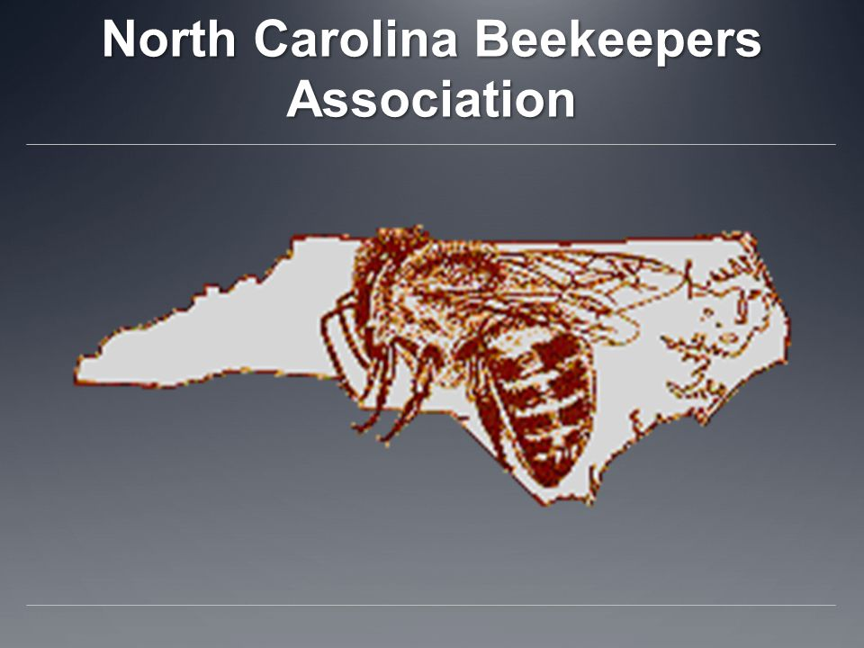 North Carolina Beekeepers Association