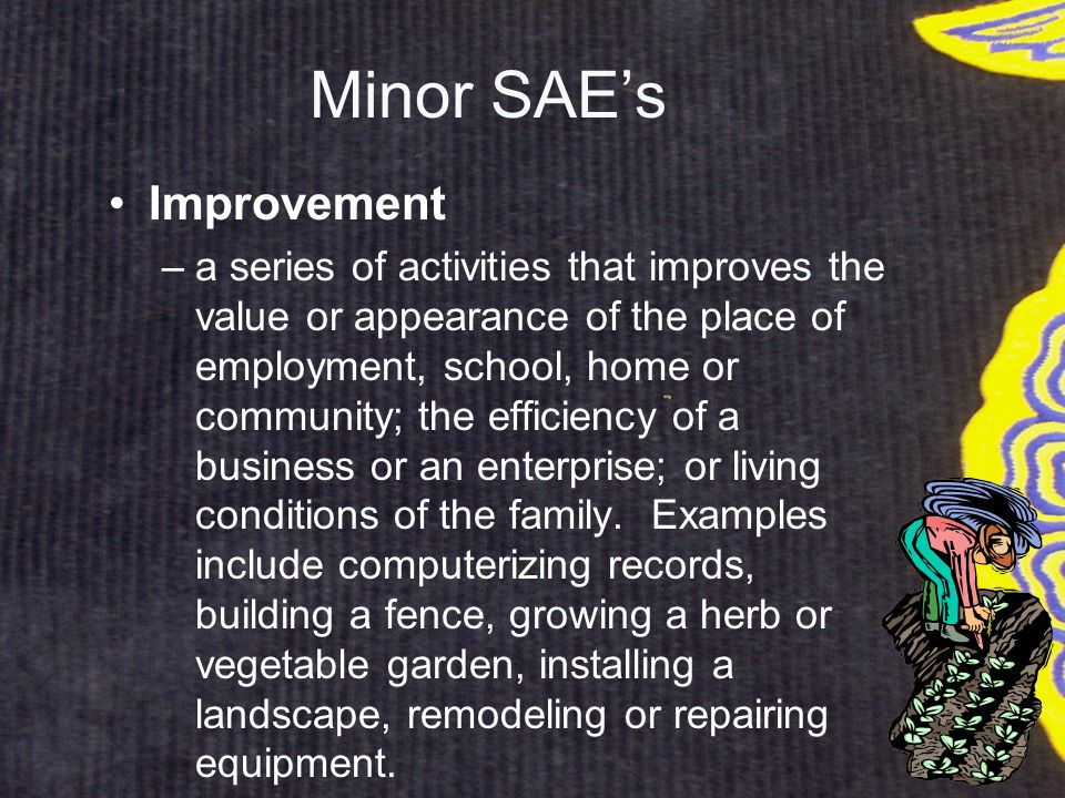 Minor SAE's Improvement –a series of activities that improves the value or appearance of the place of employment, school, home or community; the efficiency of a business or an enterprise; or living conditions of the family.