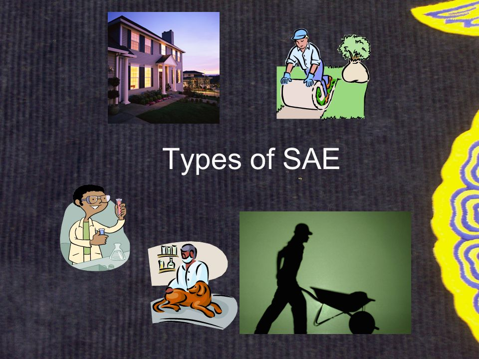Types of SAE (Supervised Agricultural Experience) Entrepreneurship –planning, implementing, operating and assuming financial risks in an agricultural business or farming activity.