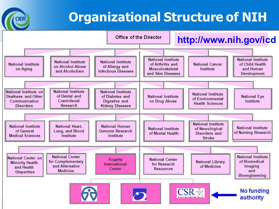 14 Office of the Director National Center on Minority Health and Health Disparities Organizational Structure of NIH http://www.nih.gov/icd National Institute on Alcohol Abuse and Alcoholism National Institute of Arthritis and Musculoskeletal and Skin Diseases National Cancer Institute National Institute on Aging National Institute of Child Health and Human Development National Institute of Allergy and Infectious Diseases National Institute of Diabetes and Digestive and Kidney Diseases National Institute of Dental and Craniofacial Research National Institute on Drug Abuse National Institute of Environmental Health Sciences National Institute on Deafness and Other Communication Disorders National Eye Institute National Human Genome Research Institute National Heart, Lung, and Blood Institute National Institute of Mental Health National Institute of Neurological Disorders and Stroke National Institute of General Medical Sciences National Institute of Nursing Research National Library of Medicine National Center for Complementary and Alternative Medicine Fogarty International Center National Center for Research Resources National Institute of Biomedical Imaging and Bioengineering No funding authority