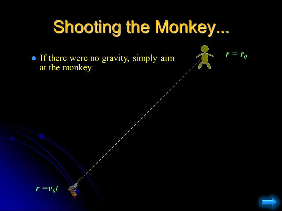 Shooting the Monkey (tranquilizer gun) l Where does the zookeeper aim if he wants to hit the monkey.