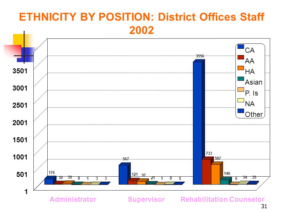 31 ETHNICITY BY POSITION: District Offices Staff 2002