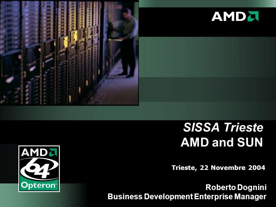 SISSA Trieste AMD and SUN Roberto Dognini Business Development Enterprise Manager Trieste, 22 Novembre 2004