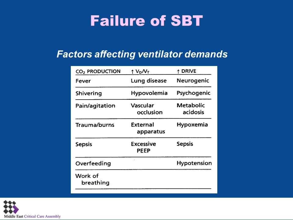 Factors affecting ventilator demands