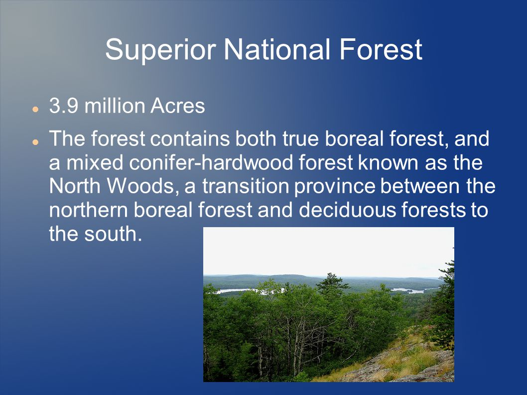 Superior National Forest 3.9 million Acres The forest contains both true boreal forest, and a mixed conifer-hardwood forest known as the North Woods, a transition province between the northern boreal forest and deciduous forests to the south.