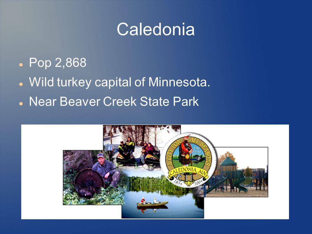 Caledonia Pop 2,868 Wild turkey capital of Minnesota. Near Beaver Creek State Park