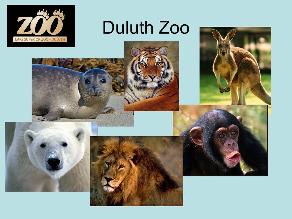 Duluth Zoo