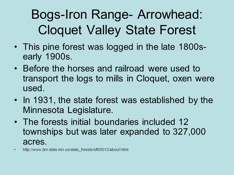 Bogs-Iron Range- Arrowhead: Cloquet Valley State Forest Recreation: –Camping, canoeing/kayaking, fishing, hunting –Hiking trails, A.T.V.