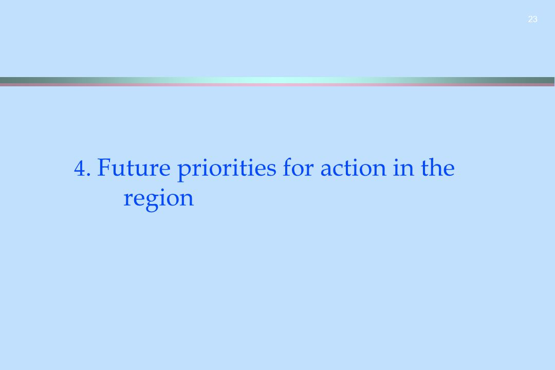 23 4. Future priorities for action in the region