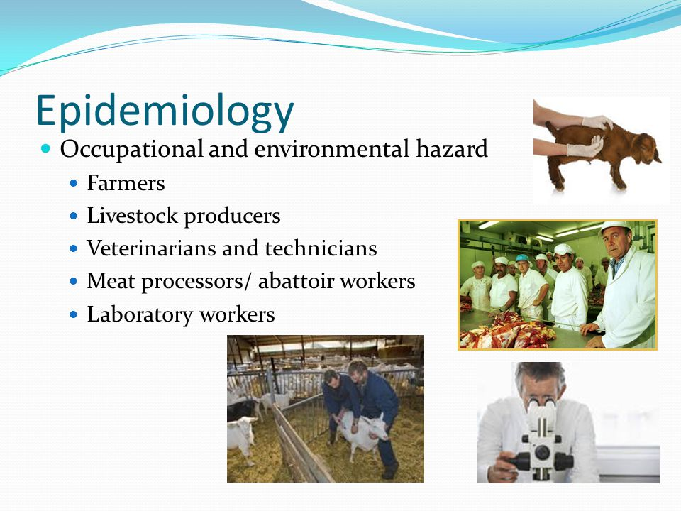 Epidemiology Occupational and environmental hazard Farmers Livestock producers Veterinarians and technicians Meat processors/ abattoir workers Laborat