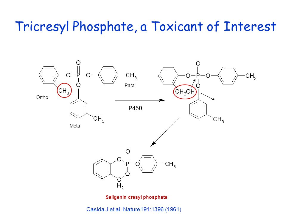 Tricresyl Phosphate, a Toxicant of Interest Ortho Para Meta Saligenin cresyl phosphate Casida J et al. Nature191:1396 (1961)