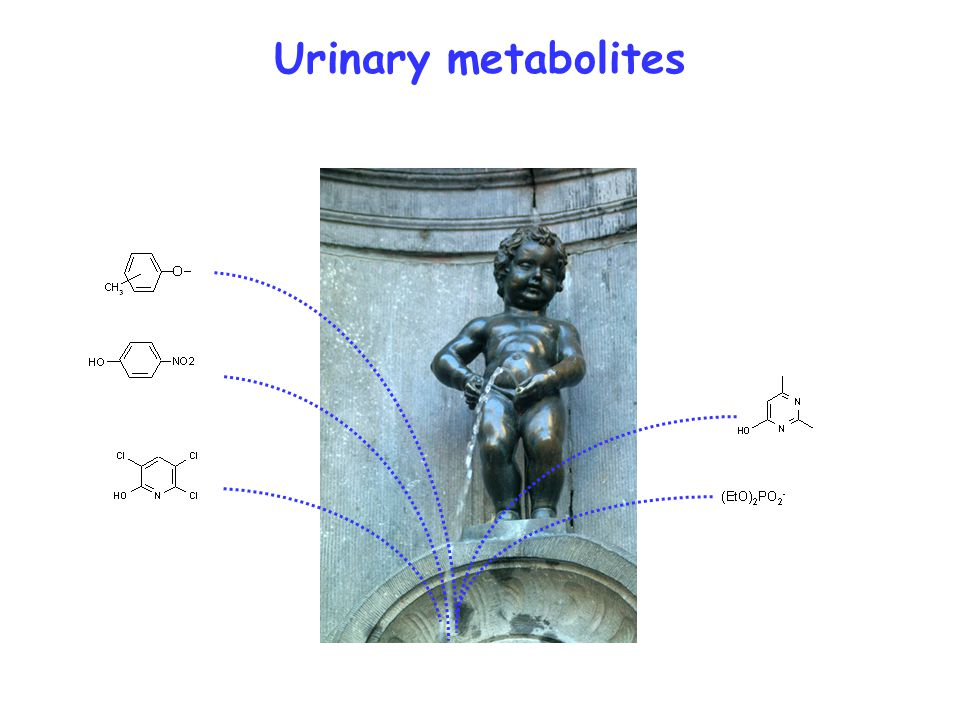 Urinary metabolites