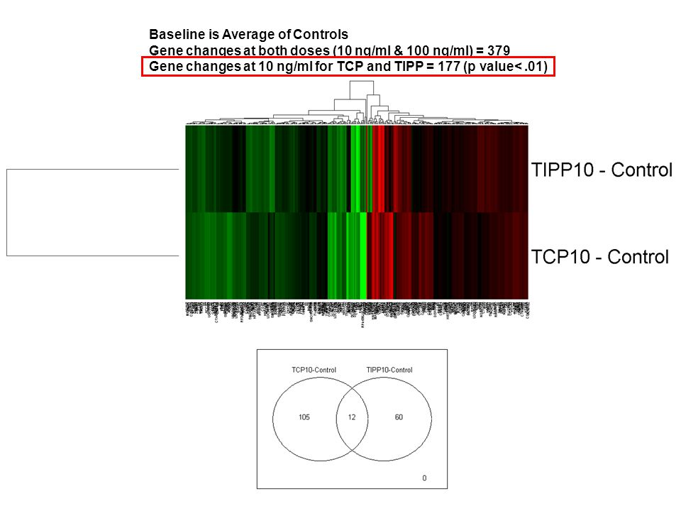 Baseline is Average of Controls Gene changes at both doses (10 ng/ml & 100 ng/ml) = 379 Gene changes at 10 ng/ml for TCP and TIPP = 177 (p value<.01)