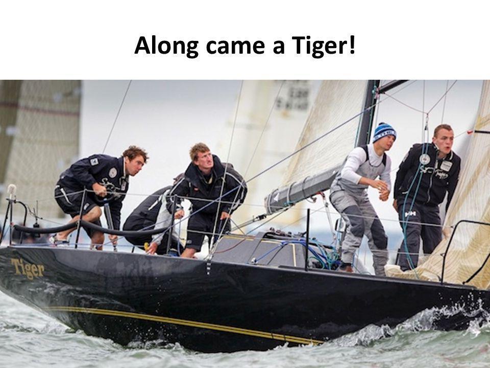 Along came a Tiger!