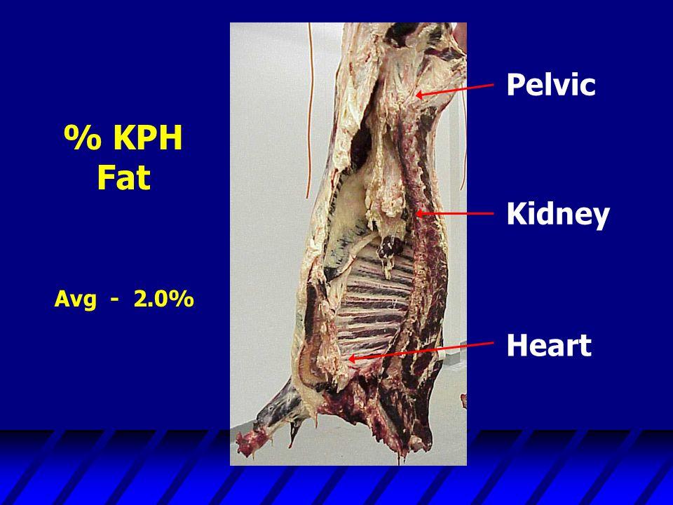 % KPH Fat Heart Kidney Pelvic Avg - 2.0%