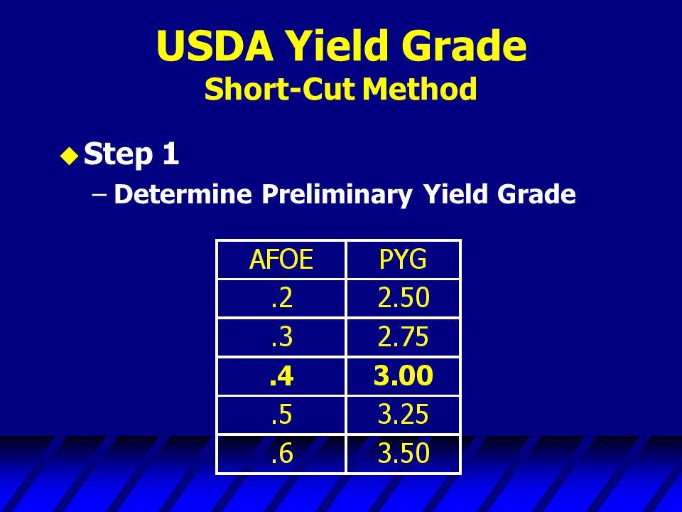 USDA Yield Grade Short-Cut Method u Step 1 –Determine Preliminary Yield Grade